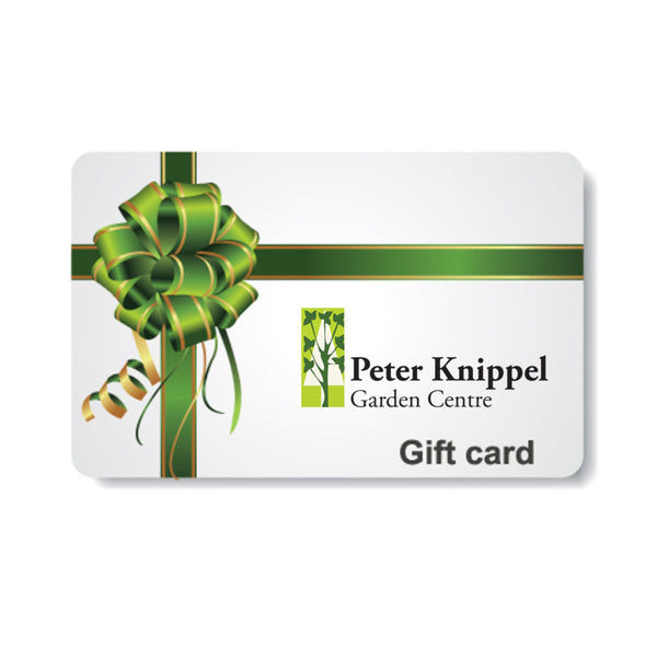 Gift Certificates - Delivered To Your Email