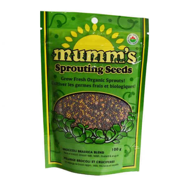 Mumm's Sprouting Seeds- Broccoli Brassica Blend