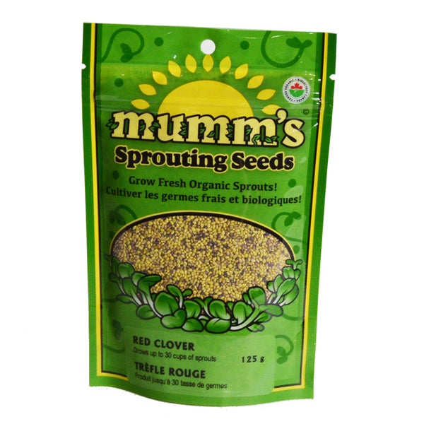 Mumm's Sprouting Seeds- Red Clover