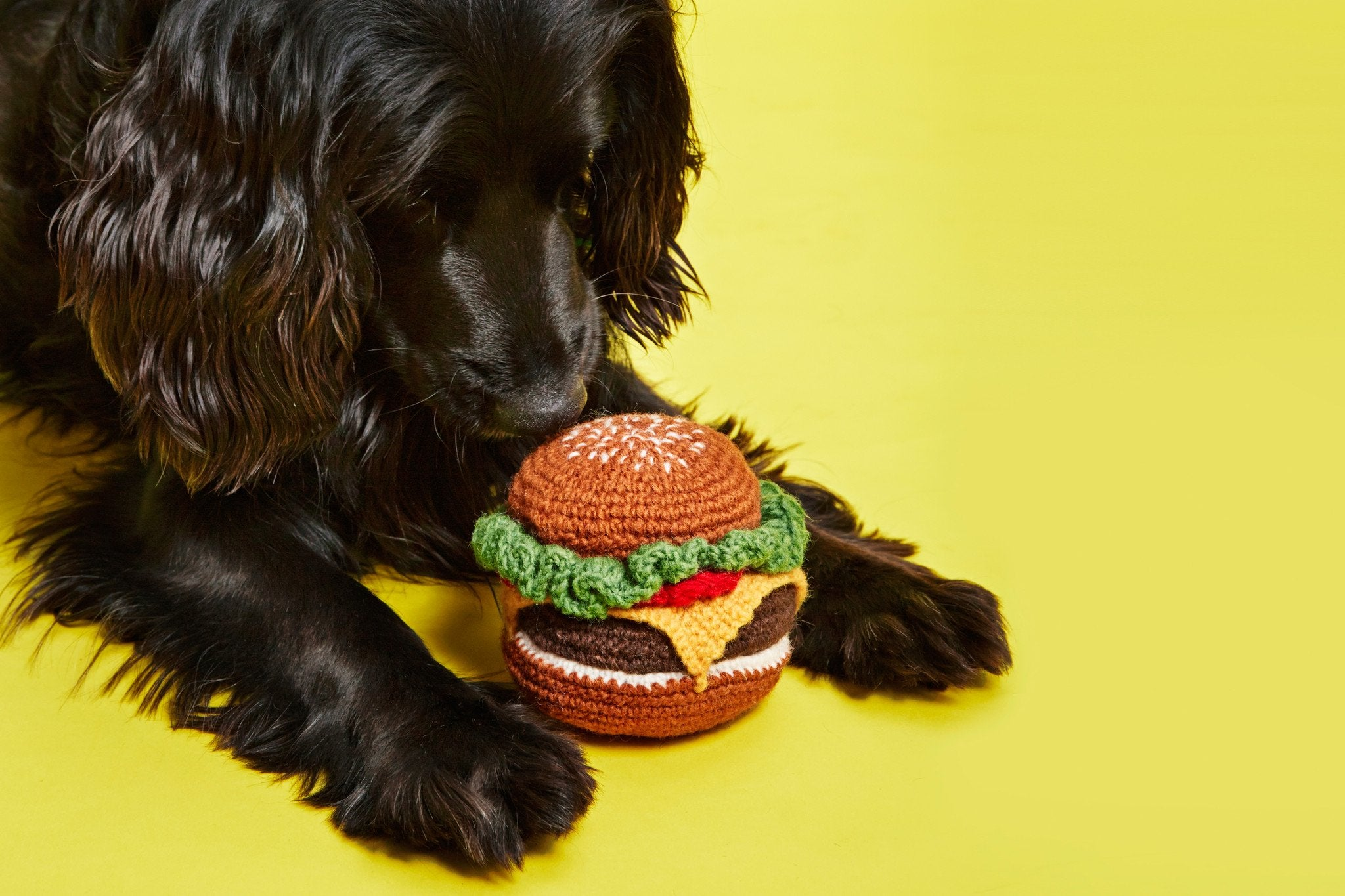 Ware of the Dog Hand Knit Hamburger