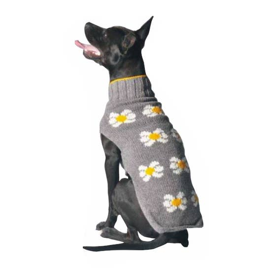 Chilly Dog - Daisies Sweater