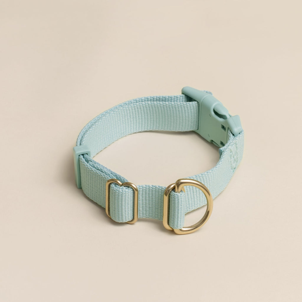 Awoo Pack Collar - Baby Blue