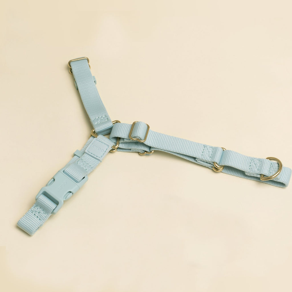 Awoo Roam No-Pull Harness - Baby Blue