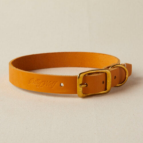 Billy Wolf - Prairie Rambler Collar