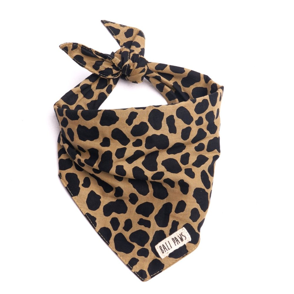 The Paws Bali Bandana - Roaring Jungle