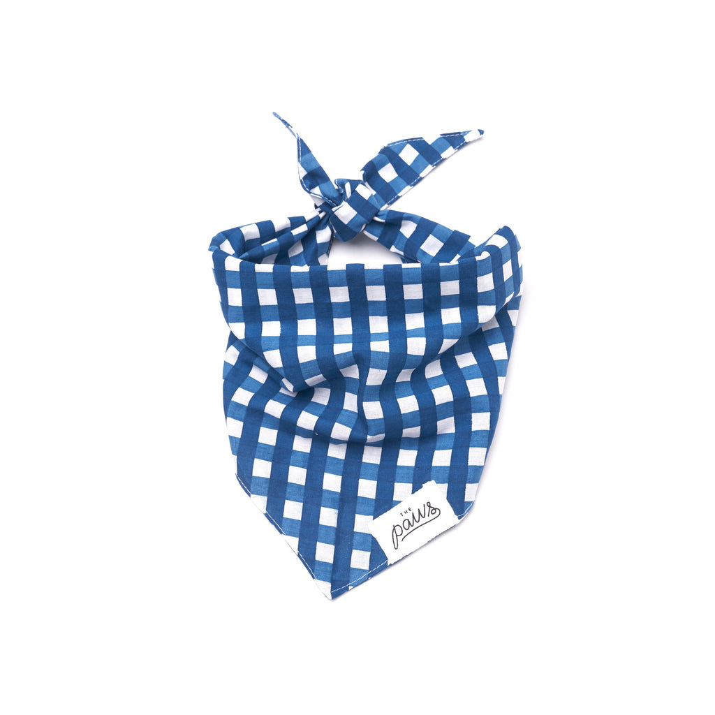 The Paws Bali Bandana - Blue Check