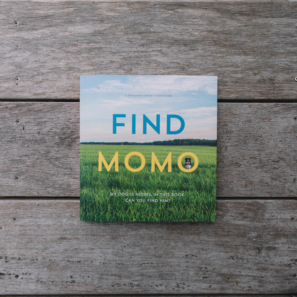 Find Momo by Andrew Knapp Book