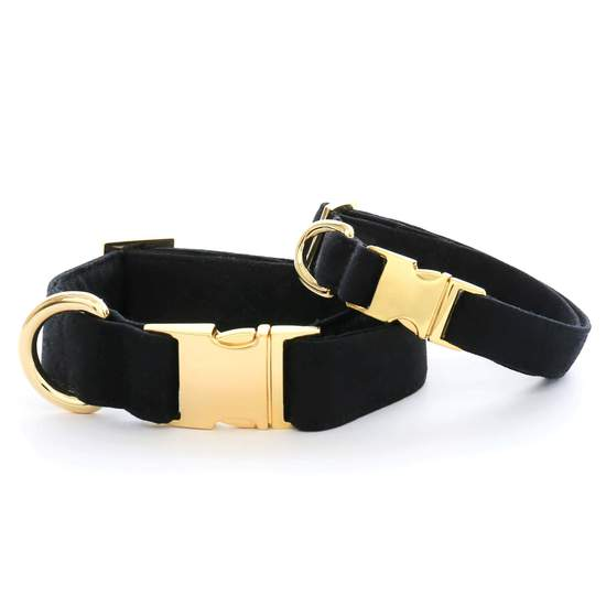the Foggy Dog Onyx Canvas Dog Collar