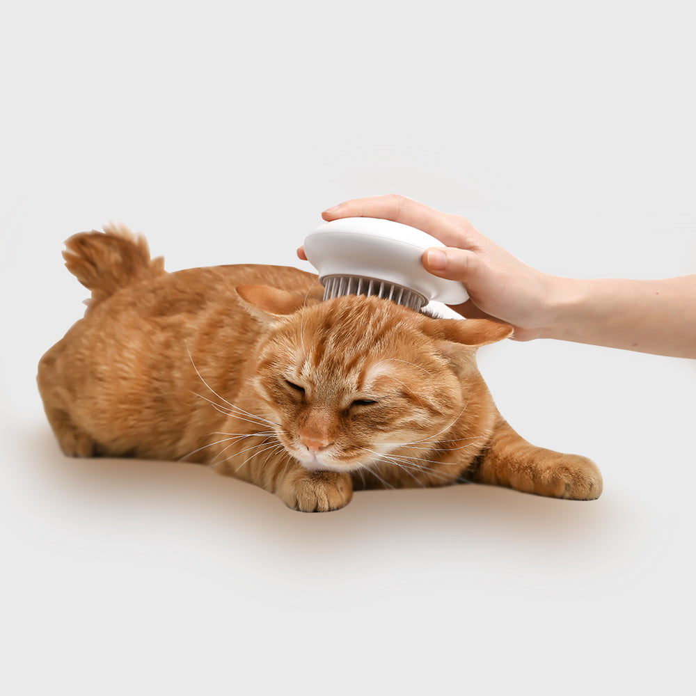 Pidan Comma Pet Brush