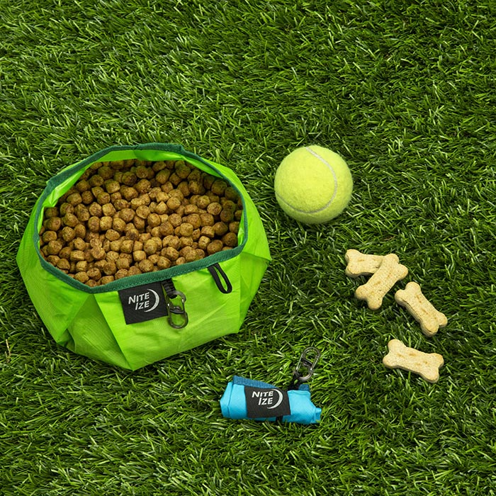 Nite Ize Rad Dog Collapsible Bowl - Lime