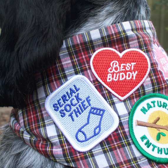 Scouts Honour Merit Badge - Best Buddy