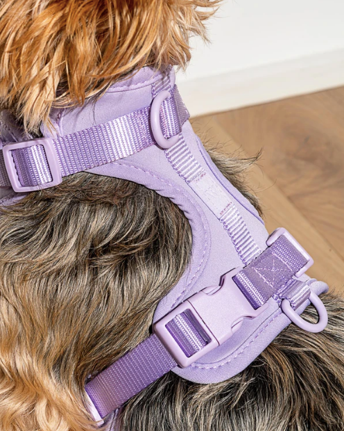 Wild One Comfort Harness - Lilac