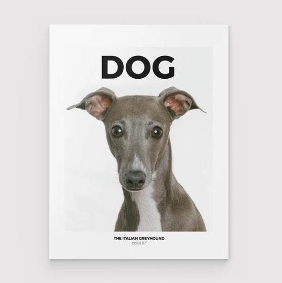 Dog Magazine - Issue 7