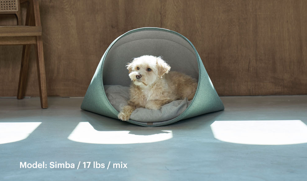 Online Exclusive: HOWLPOT Howly Bed (Colors)