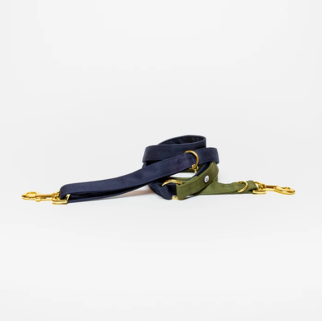 Eat Play Wag Convertible Leash - Navy + Olive