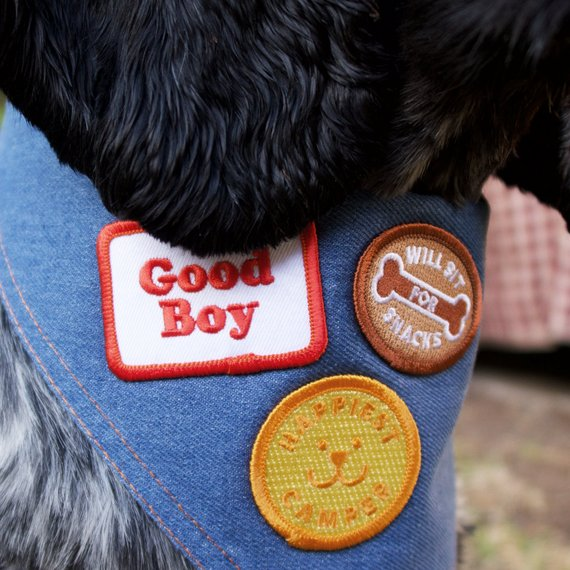 Scouts Honour Merit Badge - Good Boy