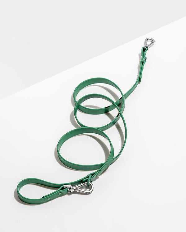 PRE ORDER: Wild One Leash - Spruce