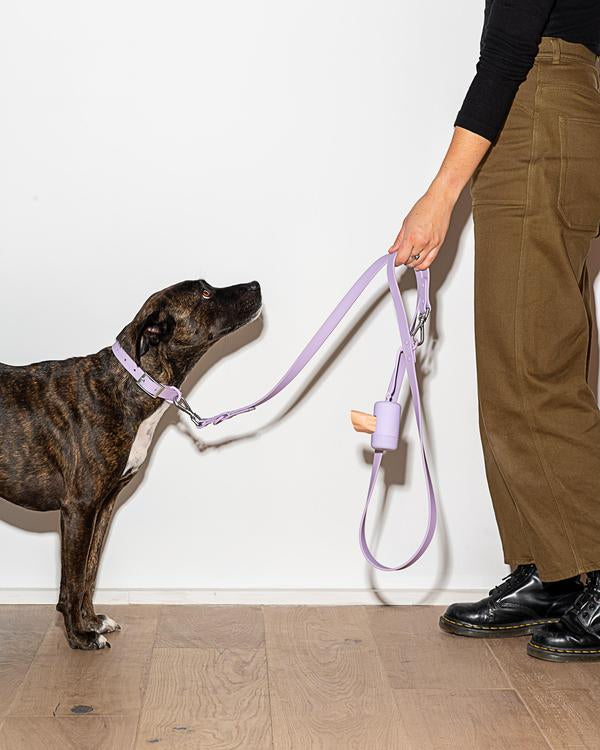 Wild One Leash - Lilac