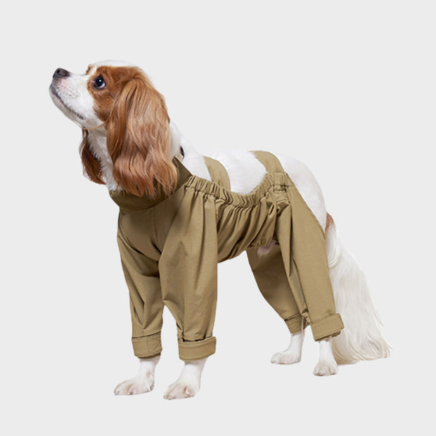 Online Exclusive: HOWLPOT Walking Suit