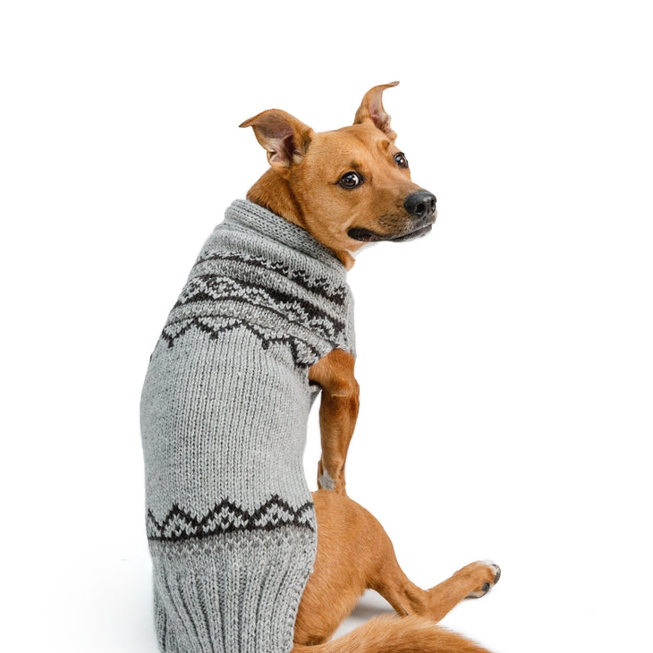 Chilly Dog - Alpaca Wyatt Sweater