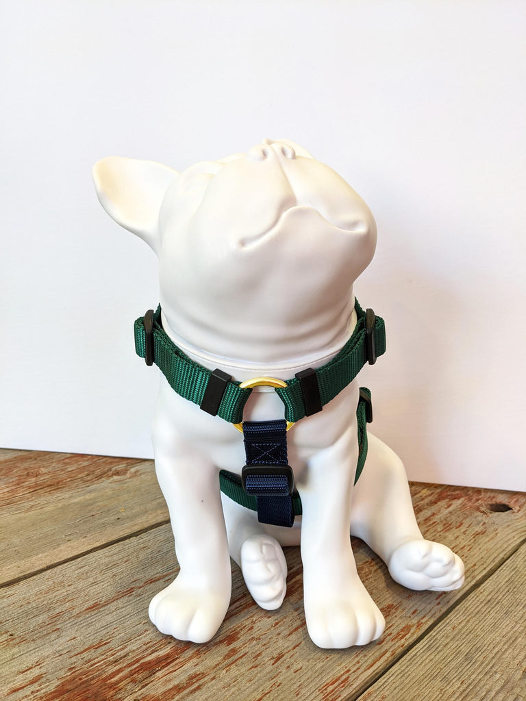 Knick Knack Paddy Whack - Harness - Navy + Green