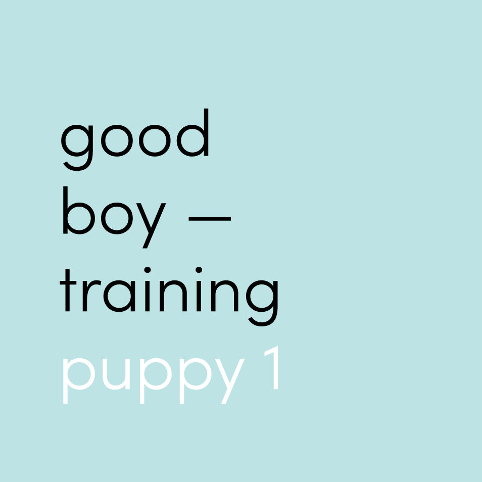 Dog Training Course - Puppy 1 (8-16 Weeks old)