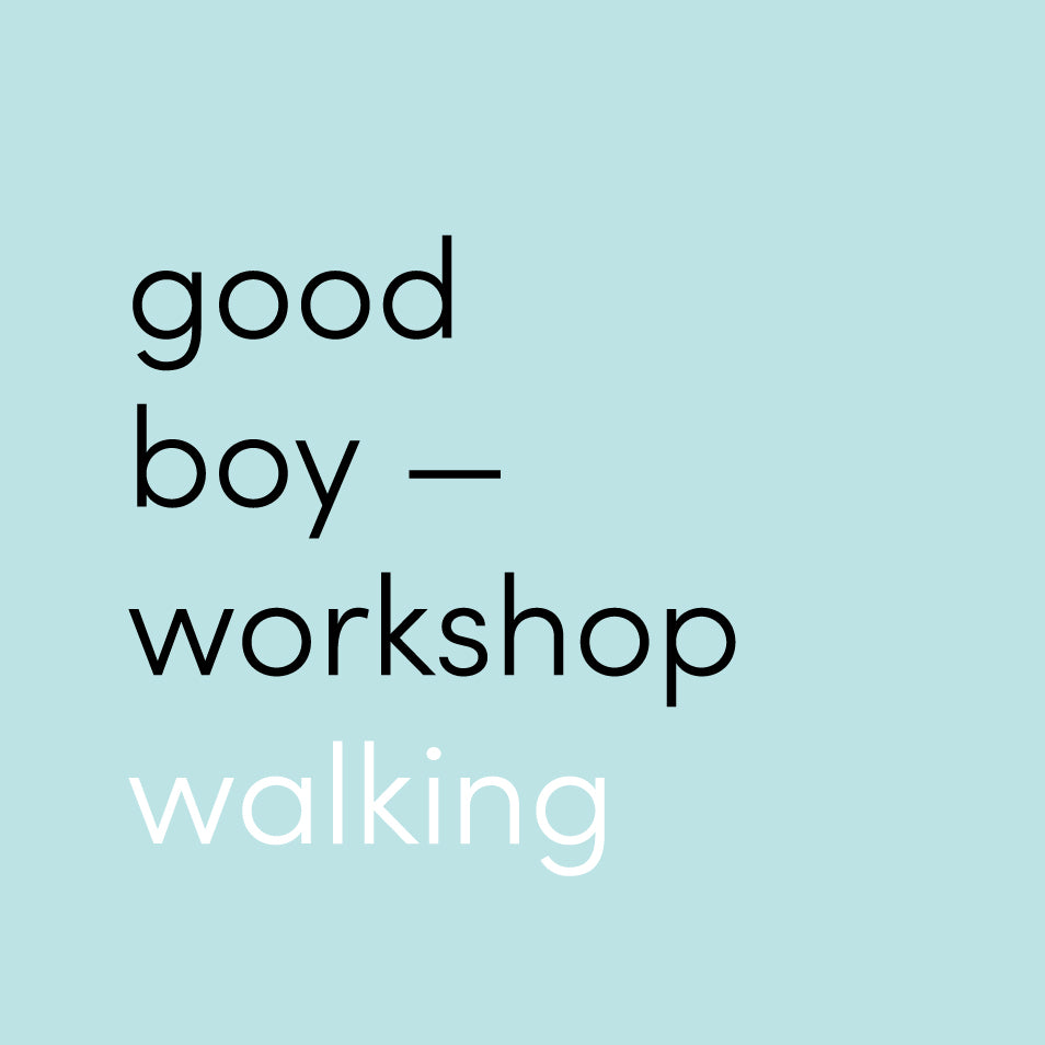 One Day Workshop - Walking Enrichment (All Ages)