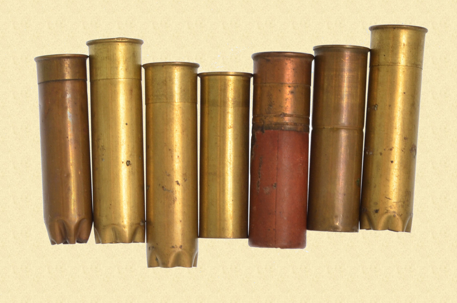 COLLECTOR SHOTSHELLS