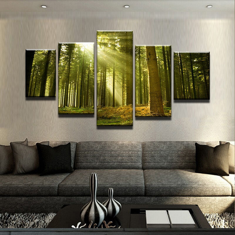 Forest Rays Canvas