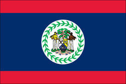 Belize (UN) Flag