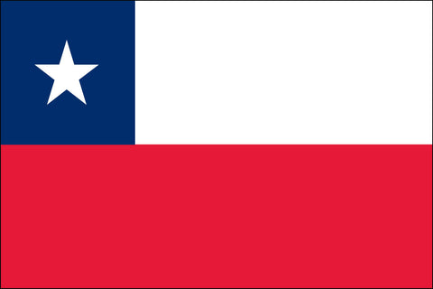 Chile (UN OAS) Flag