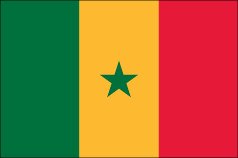 Senegal (UN) Flag