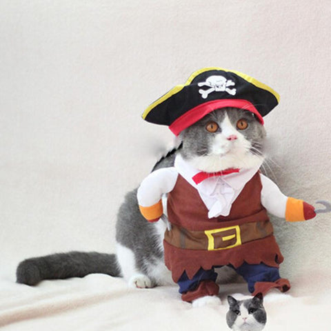 Cute Pirate Clothes For Cat