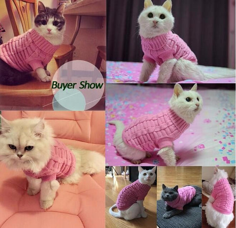 Cat Sweater Spagetti Color Warm Autumn Winter Sweater