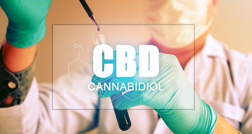Will CBD Show On A Drug Test?