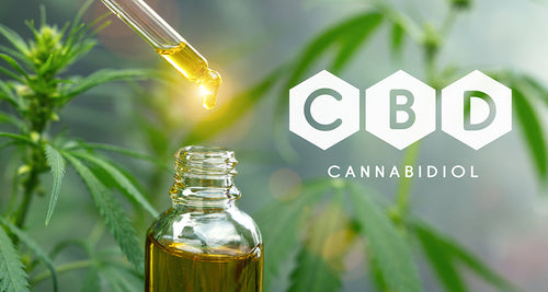 What Is a CBD Tincture?