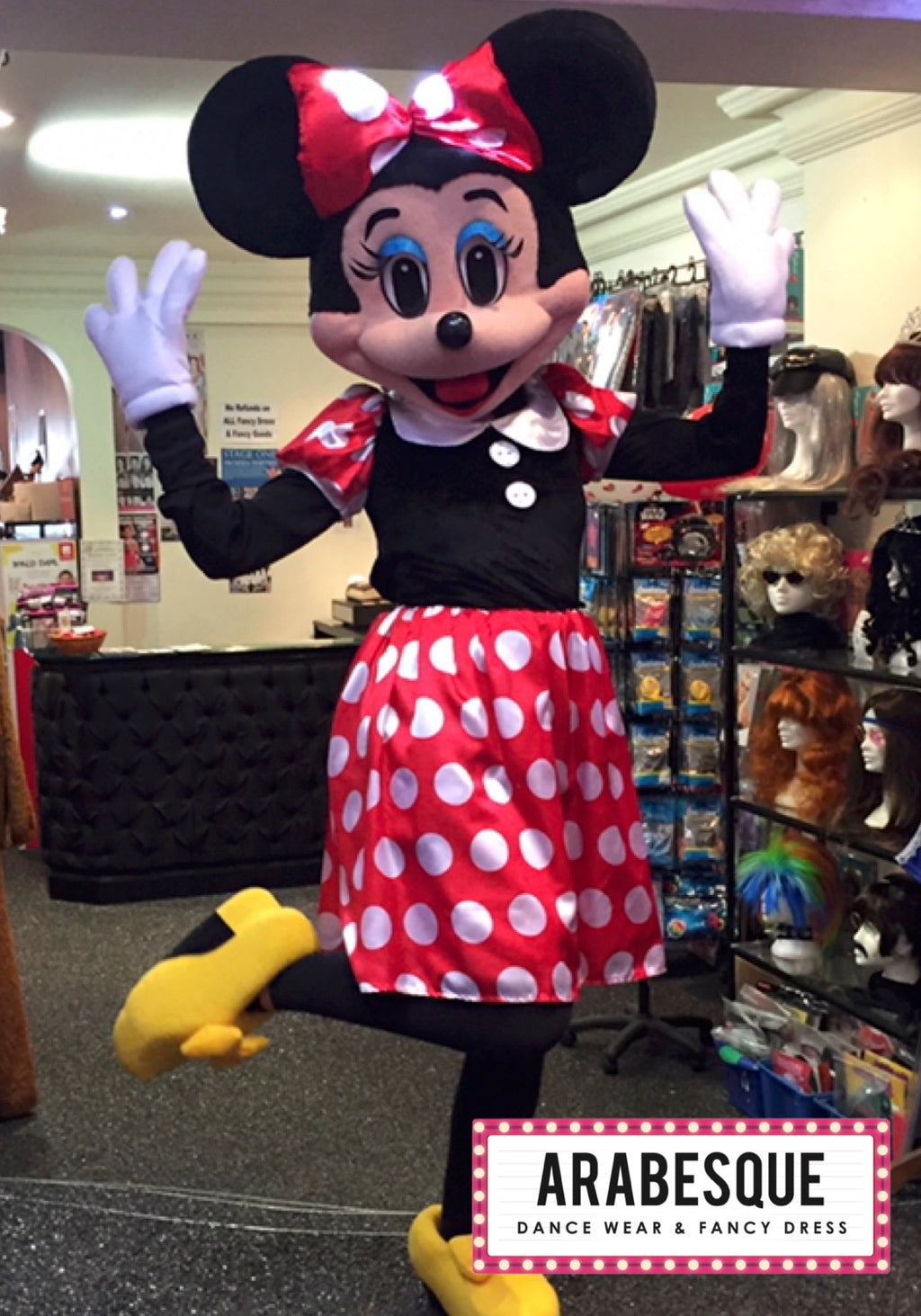 Girl Mouse Mascot Costume