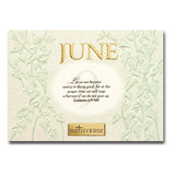 June BIRTHVERSE Bible Birthday Greeting Card - Centerville C&J Connection, Inc.