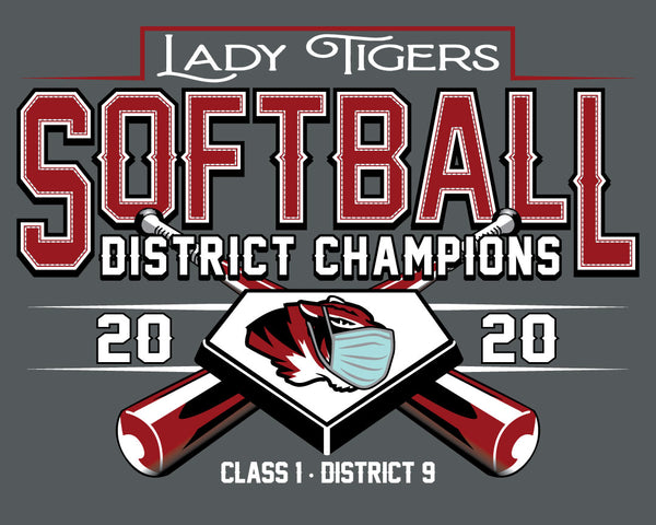 District Champs Vintage Softball Hoodie 2020