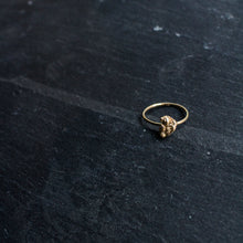Load image into Gallery viewer, Zero Waste Ring Gold
