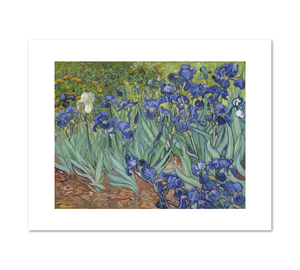 Irises by Vincent van Gogh Archival Print