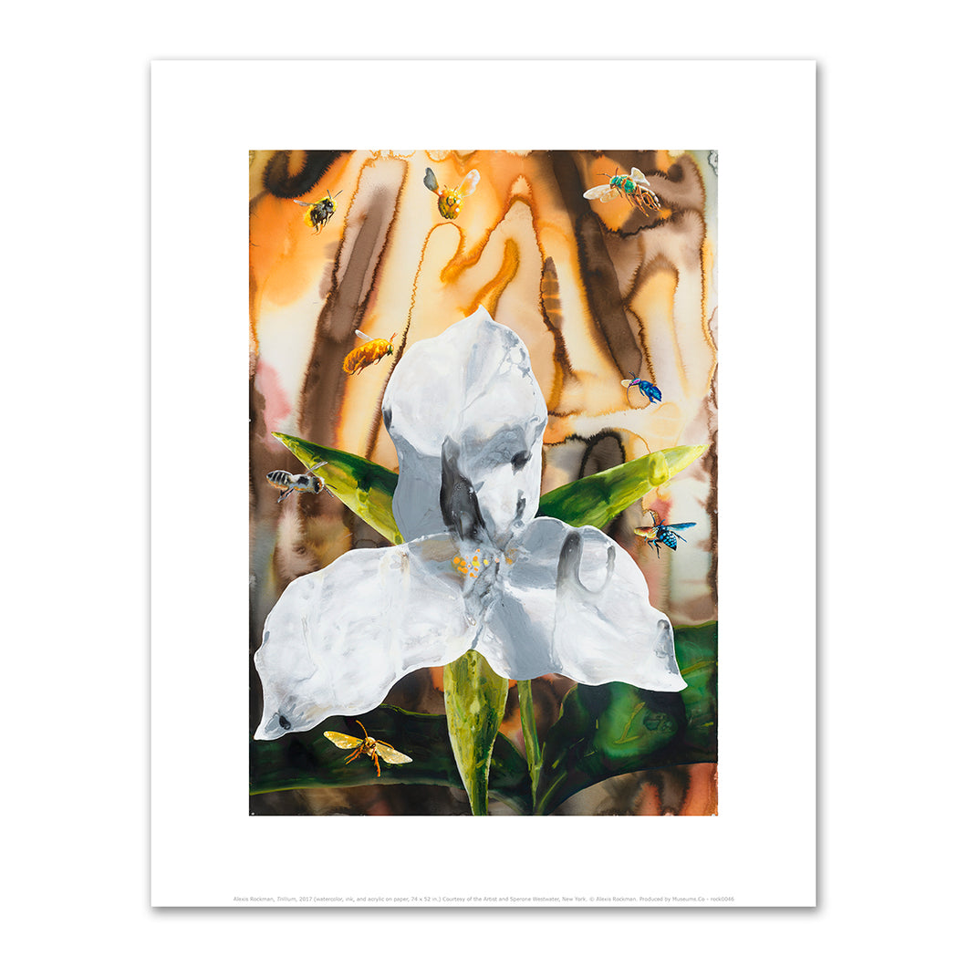 Alexis Rockman, Trillium, Fine Art Print in 4 sizes by 2020ArtSolutions