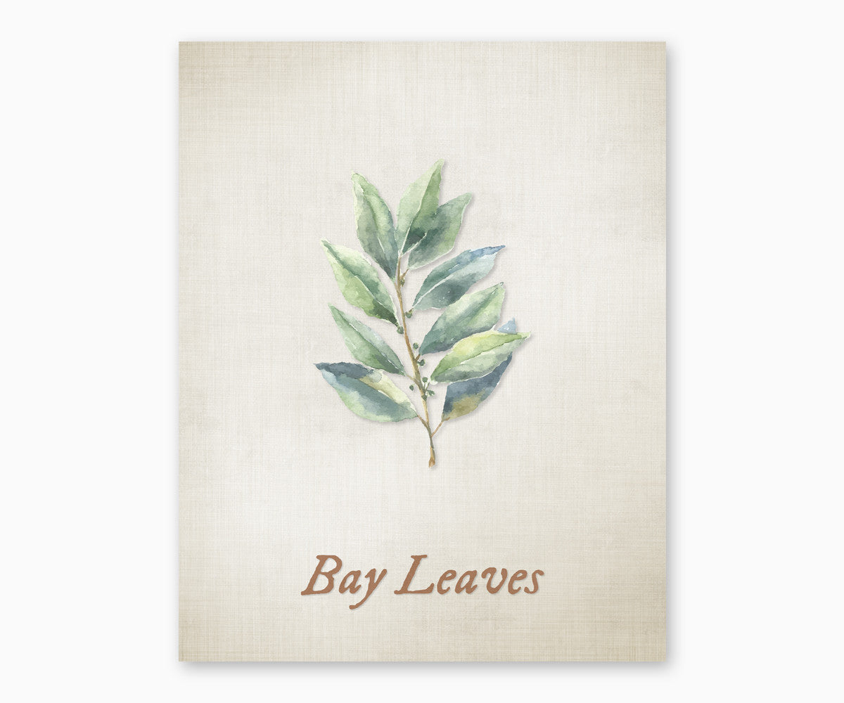 Bay Leaves Vintage Kitchen Wall Art