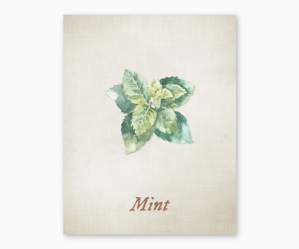 Mint Vintage Kitchen Wall Art