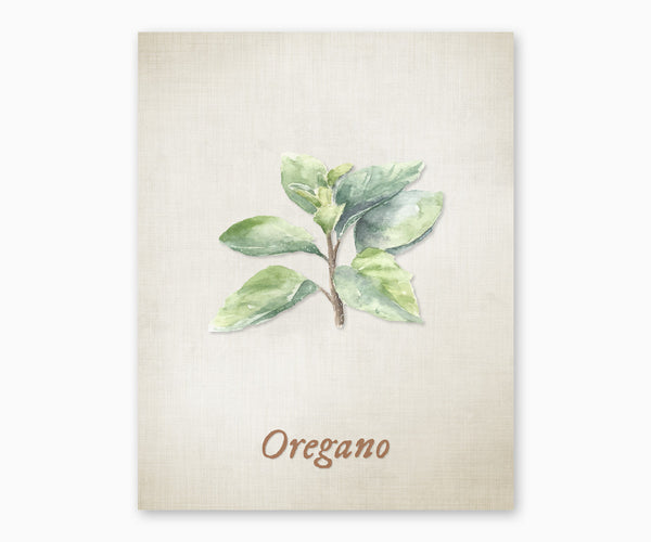 Oregano Vintage Kitchen Wall Art