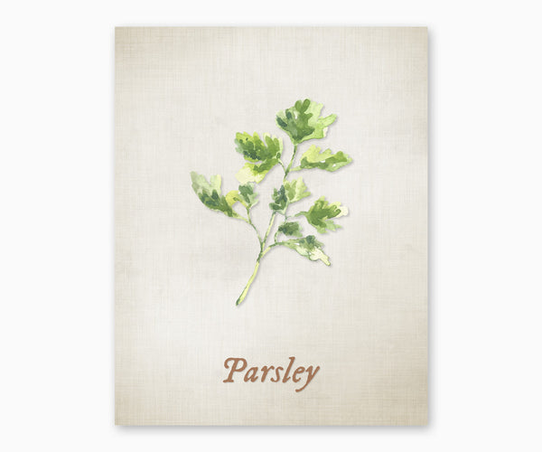 Parsley Vintage Kitchen Wall Art