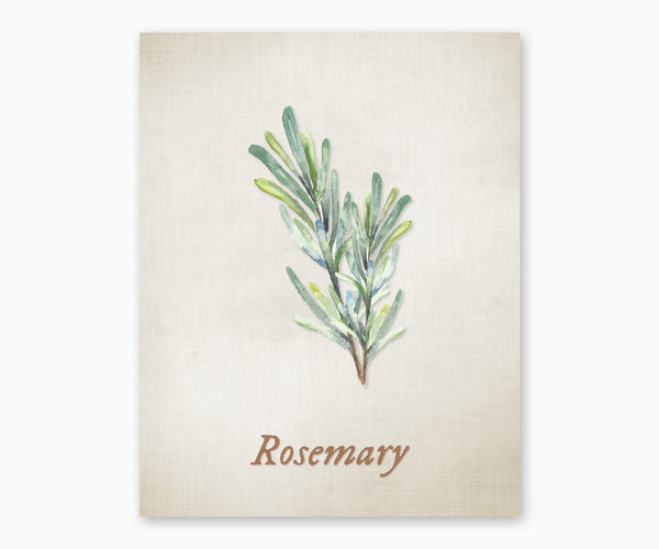 Rosemary Vintage Kitchen Wall Art
