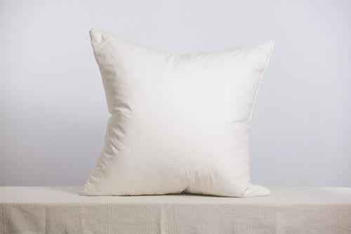 22 X 22 Occasional Pillow