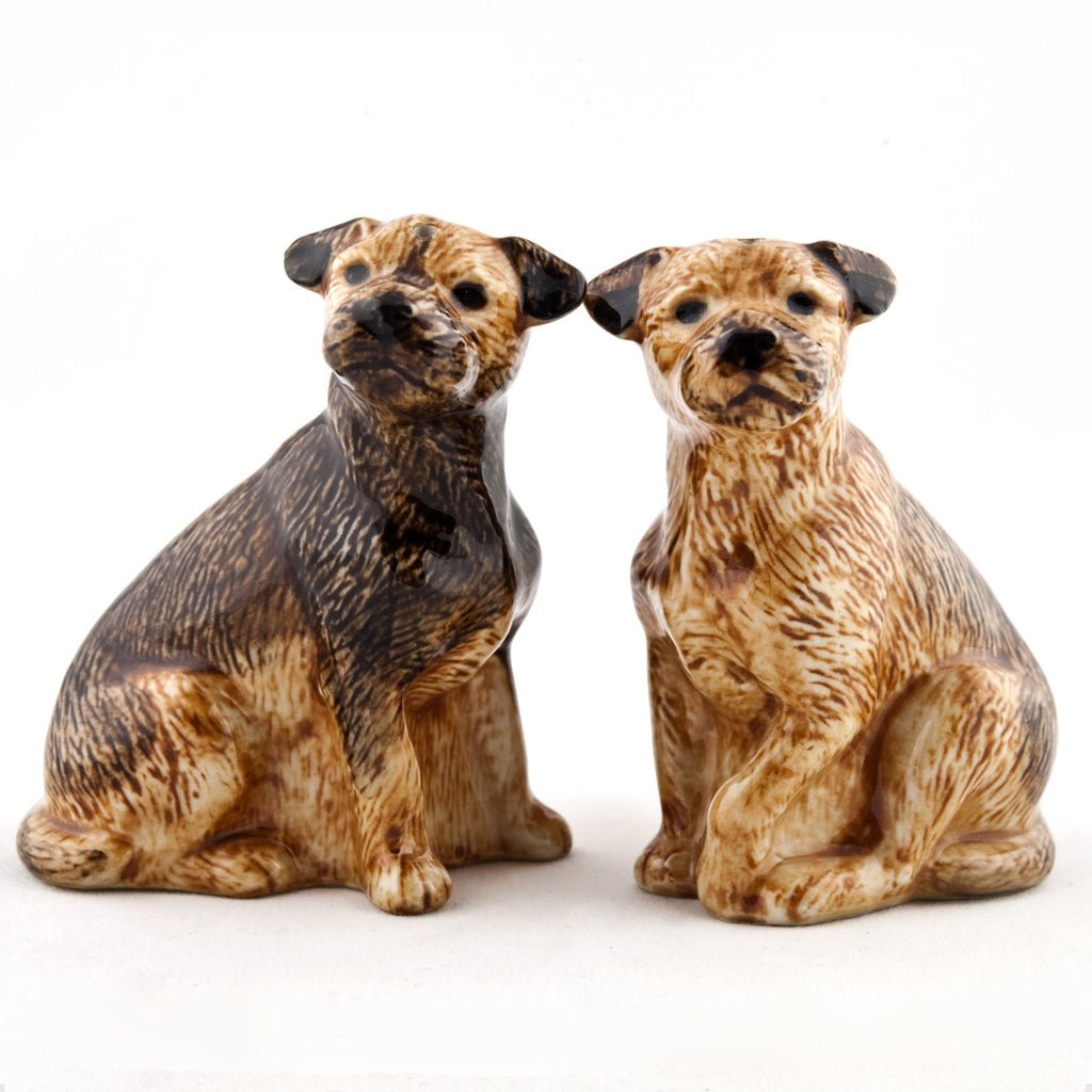 BORDER TERRIER salt og pipar staukar