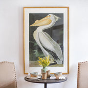 Vintage White Pelican Framed Art